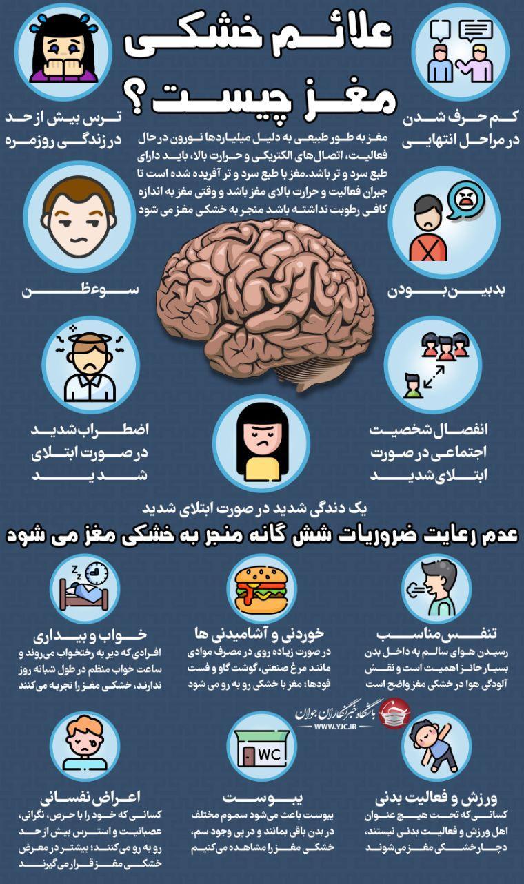 اینفوگرافی خشکی مغز