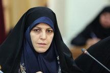 مولاوردی: عده ای به هر اقدام دولت در حوزه زنان و خانواده، برچسب فمنیستی می زنند