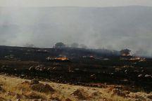 آتش سوزیهای  روز جمعه ۴۰ هکتار مراتع سوادکوه را خاکستر کرد