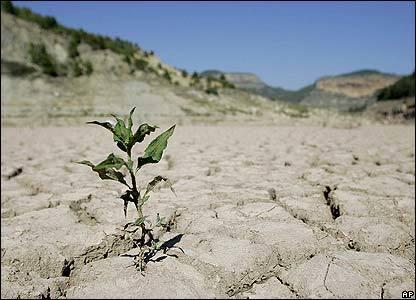 خشک ترین فروردین کاشان دی 50 سال گذشته