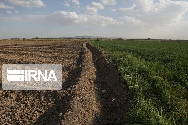 توسعه سطح زیرکشت در خراسان جنوبی اولویت ندارد