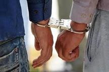 دستگیری اعضای باند خانوادگی جیب بری در مهران