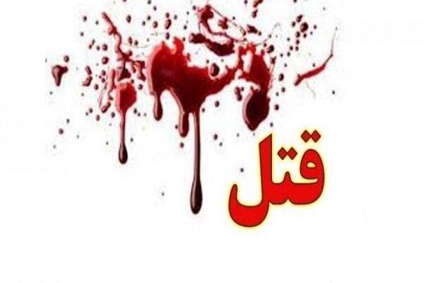 دستگری سارق قاتل در فارس