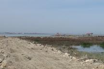 اجرای طرح گردشگری جزیره آشوراده از سر گرفته شد