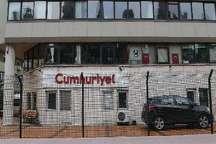 مدیرسایت روزنامه جمهوریت ترکیه بازداشت شد