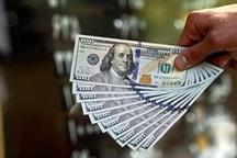 جولان دلالان در آشفته بازار نوسان قیمت دلار