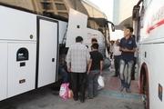 سهم ناوگان مسافری بوشهر در تصادفها تنها سه دهم درصد است