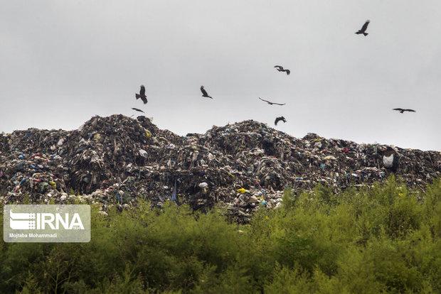 روزانه ۳۰ تن زباله در روانسر تولید میشود