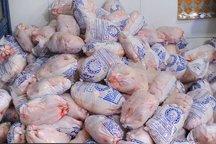 آغاز توزیع مرغ کشتار روز تنظیم بازار در ۱۴مرکز فروش در زاهدان