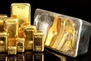 طلا و نقره، تنها دارایی های سود بخش در آینده؟