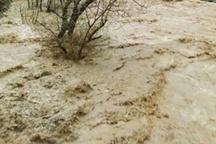 سیل در جرقویه راه افتاد  تخریب ۸ خانه و نابودی همه محصولات کشاورزی