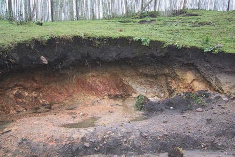 فرسایش خاک در خراسان شمالی بیش از میانگین کشوری است