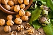 تاثیر مصرف گردو برای سلامت باکتری های روده و قلب