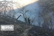 پیشروی آتش در پارک ملی گلستان مهار شد
