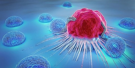 هوش مصنوعی در درمان سرطان بهتر از انسان عمل میکند؟