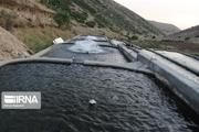 ظرفیت تولید ماهی سردابی شهرستان کیار ۱۰ هزار تن در سال است