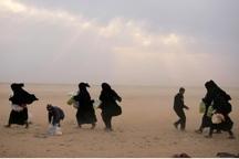 کشته شدن 84 غیرنظامی سوری در استان دیرالزور