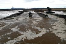بارش شدید باران از فردا در قزوین  احتمال سیلابی شدن مسیلها