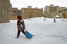 سرما و برودت هوا مدارس اردبیل برای برای دومین روز تعطیلی کرد