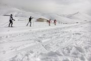 مدال طلای کیادربندسری در رقابت های اسکی آلپاین