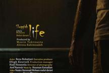 فیلم زندگی لزج به جشنواره بین المللی ایتالیا راه یافت