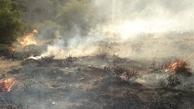 جنگلهای گچساران همچنان میسوزند/ پرواز ۳  بالگرد برای کمک
