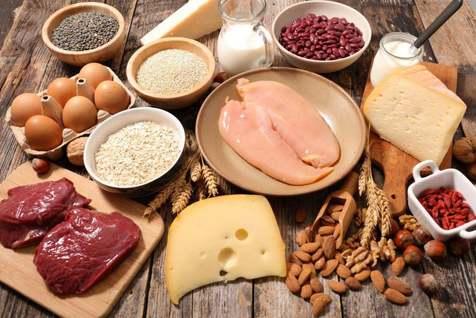 کاربرد اصلی پروتئینها در بدن؟