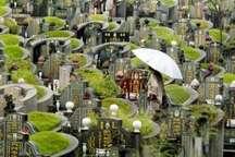 «روز اموات» و خاکسپاری زیست محیطی در چین