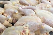 یک تن گوشت مرغ احتکار شده در قم کشف شد