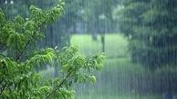 بارش باران تابستان در باغملک