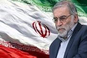 چین و سوییس ترور دانشمند ایرانی را محکوم کردند