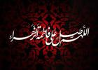 مداحی شهادت حضرت زهرا/ نریمان پناهی + دانلود