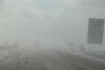 بارش برف، باران و کولاک شدید در جاده های زنجان جریان دراد