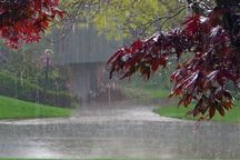 بارشهای رگباری در آذربایجانغربی ادامه دارد