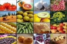 طرح ارتقای سلامت محصولات کشاورزی در دستور کار قرار گرفت