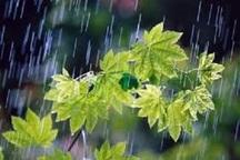 امیدبخشی بارندگی های اخیر در خراسان رضوی