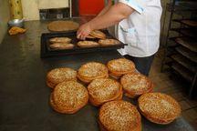 مهاجرت از روستاهای سمنان با حمایت از صنایع کوچک خانگی متوقف میشود