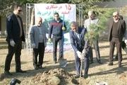 مراسم روز درختکاری در آکادمی ملی المپیک برگزار شد