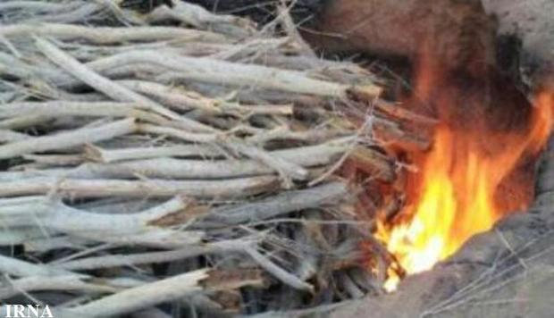 تخریب 2 کوره زغال غیرمجاز در لردگان