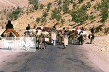 استقرار ۲۲هزار خانوار عشایری هفت استان کشور در مناطق قشلاقی خوزستان