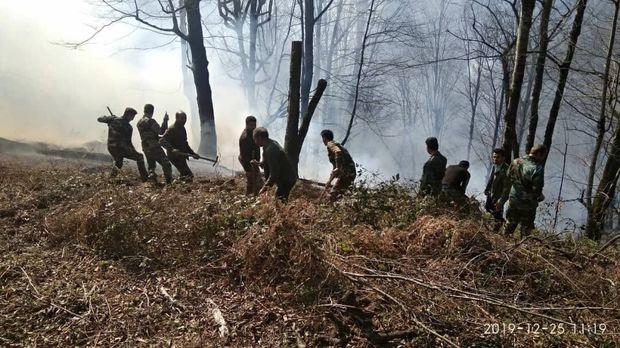 حریق جنگل های منطقه ساحلی کیاشهر مهار شد