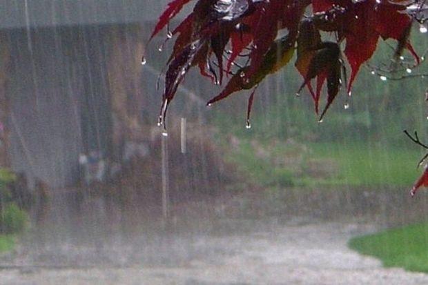 آسمان فارس بعدازظهر جمعه تا یکشنبه بارانی است