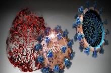ویروس کرونا در کجاها بیشتر است؟