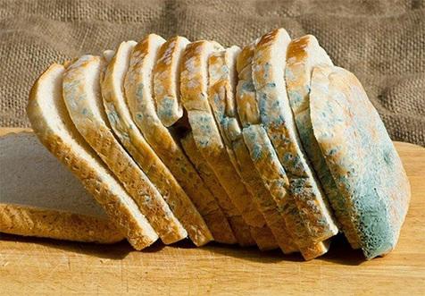 نان کپک زده چه خواصی دارد؟