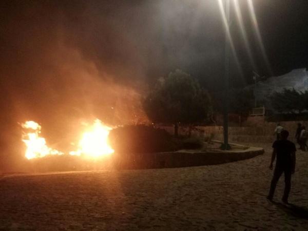 آتشسوزی در پارک کوهستان یزد  خاکستر شدن 500 مترمربع از درختان منطقه