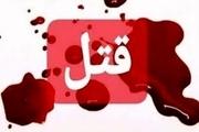 قتل فجیع دختربچه 7 ساله توسط پدرش در یکی از استان ها/ توضیحات جدید در مورد پرونده قتل بابک خرمدین از زبان رئیس پلیس آگاهی