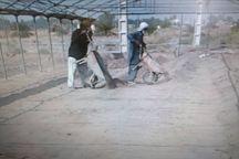 آمادهسازی اراضی ایرانشهر برای کشت خیار گلخانهای