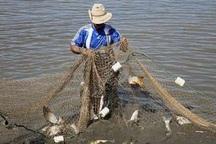 سرانه مصرف ماهی در آذربایجان شرقی 6.6 کیلوگرم است