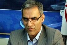 هفته منابع طبیعی 300 هزار اصله نهال در استان یزد توزیع می شود