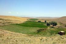 بیش از 128 هزار از اراضی کردستان رفع تداخل شد